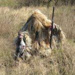 Охота с манком на гусей